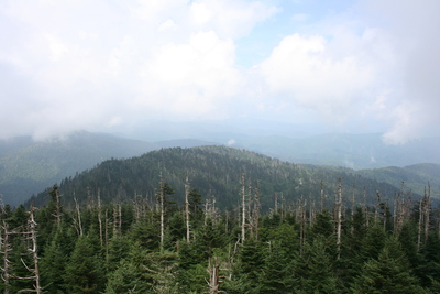 View at Clingmans Dome for the 2011 Golden Packet